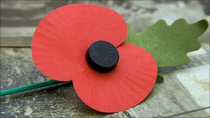 Papavero | Poppy | Remembrance Sunday